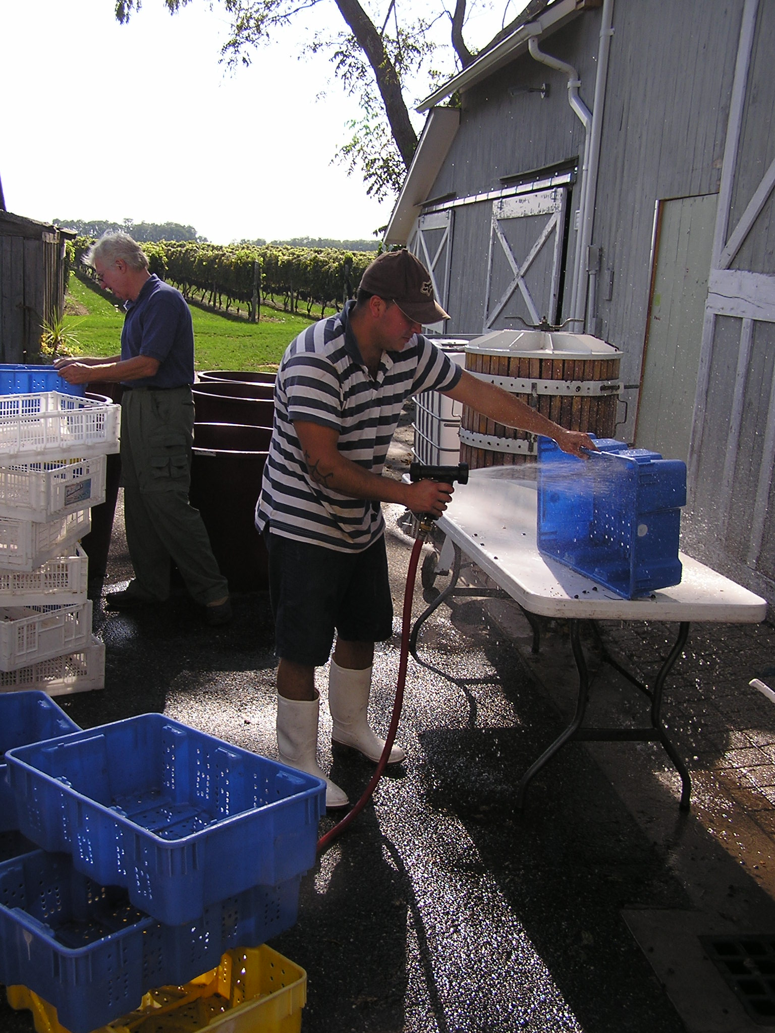 winemaking 18