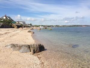 My morning walk on the beachIMG_0522