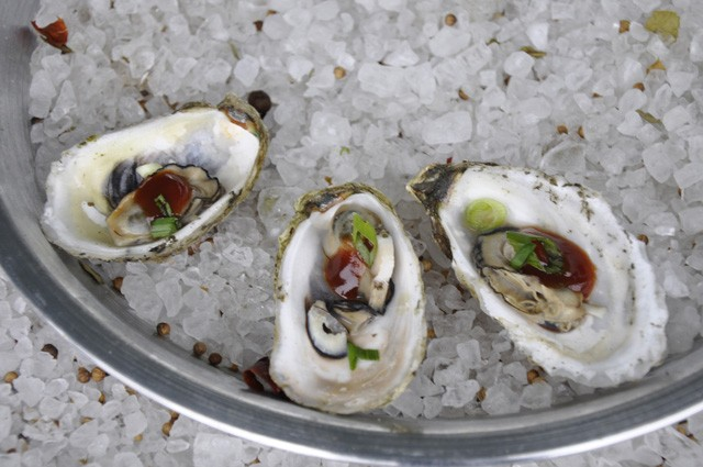 Oysters Shellabration